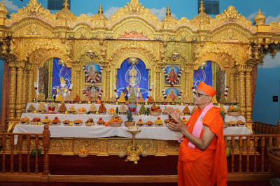 Divine darshan of Acharya Swamishree and divine annakut darshan of Lord Swaminarayanbapa Swamibapa
