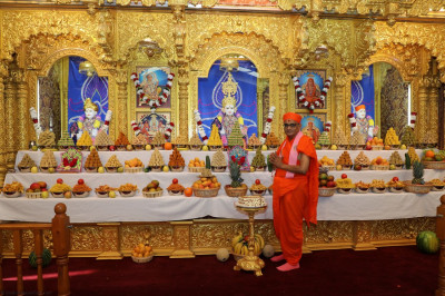 Divine annakut darshan of Lord Swaminarayanbapa Swamibapa and Acharya Swamishree