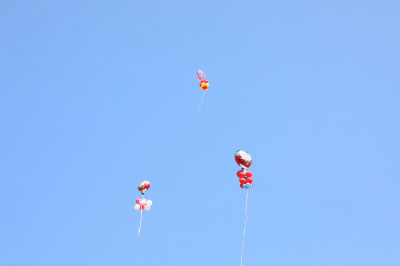 Balloons unleashed in the air by Acharya Swamishree