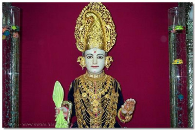 On this day Shree Ghanshyam Maharaj is adorned with a golden mor moogat