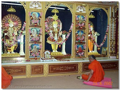 HDH Acharya Swamishree performing the patotsav poojan ceremony