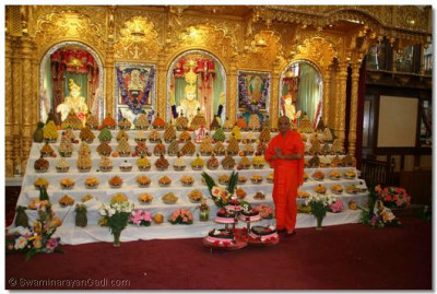 Acharya Swamishree gives darshan in front of the annkut, lovingly presented to the Lord by the sants and disciples