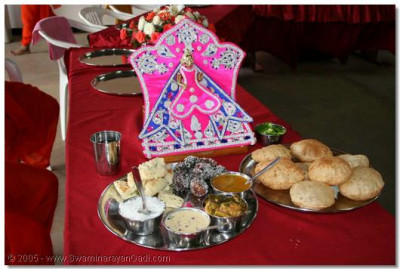 Food offered to Shree Harikrishna Maharaj