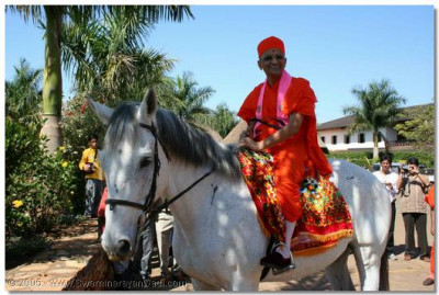 At Lake Victoria, Acharya Swamishree presides upon a white horse