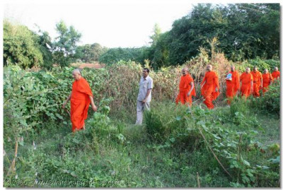 In order to fulfil the spiritual desires of the disciples, Acharya Swamishree and sants travel on foot to the various remote villages
