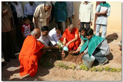 Acharya Swamishree plants a tree in order to encourage others to do the same, and not cut away the woodland