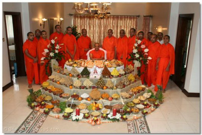 Acharya Swamishree and sants give their darshan