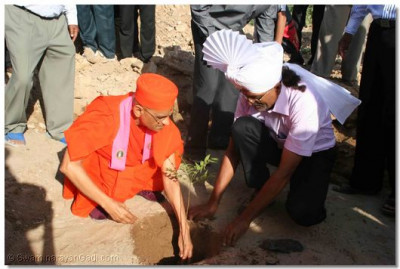 Acharya Swamishree plants trees around the new gate