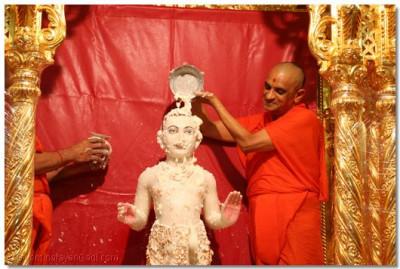 Acharya Swamishree affectionately bathes Lord Swaminarayan with yogurt