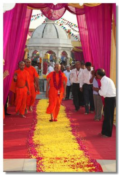 Acharya Swamishree walks on a path of flowers into the temple