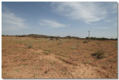 Barren land in Naranpur where Ghanshyam Baag was created