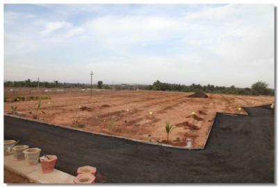The garden ground works is complete for the planting of trees