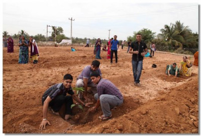 Disciples from various villages in Kutch plant trees