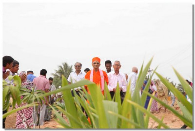 Acharya Swamishree inspects the tree planting