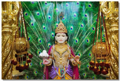 Divine darshan of Lord Swaminarayan on Janmashtami