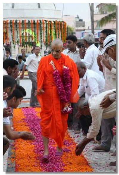 Acharya Swamishree walks on a carpet of flowers laid down by sants and disciples