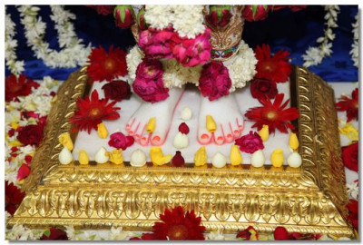 Divine darshan of Lord Swaminarayan's lotus feet