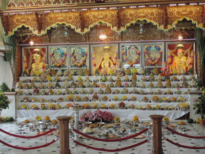 Annakut darshan in Shree Swaminarayan Mandir Delhi