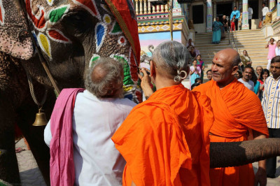 Acharya Swamishree paints an elephant as part of the diwali celebrations