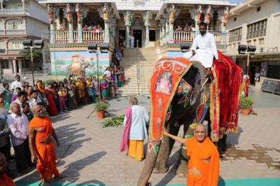 Acharya Swamishree showers His blessings on the elephant