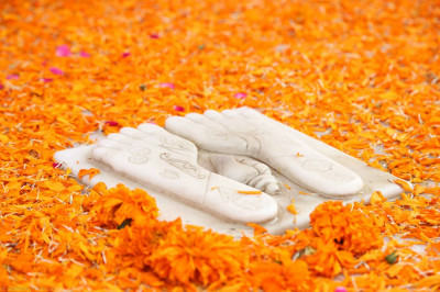 Divine darshan of the lotus feet of the Lord at the chattri