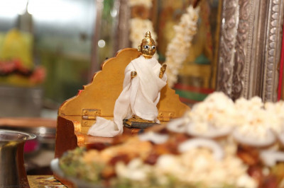 Shree Harikrishna Maharaj adhorned in white clothes