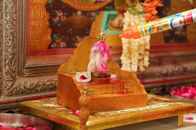 Shree Harikrishna Maharaj is showered with coloured water