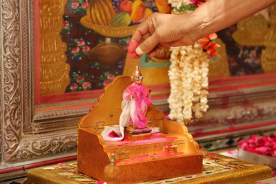 Acharya Swamishree puts some coloured powder on Shree Harikrishna Maharaj