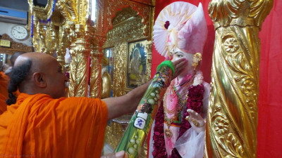 Sadguru sants shower Shree Ghanshyam Maharaj with coloured water and powder