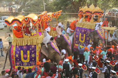 Three of the four majestic elephants taking part in the grand procession