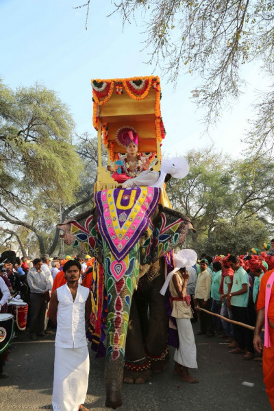 One of the majestic elephants taking part in the grand procession