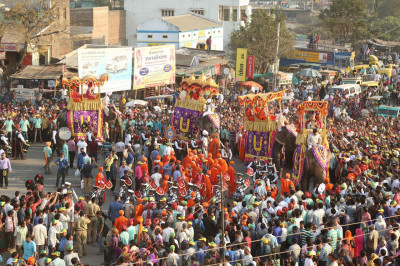 All four of the majestic elephants in view as the parade proceeds towards the festival ground
