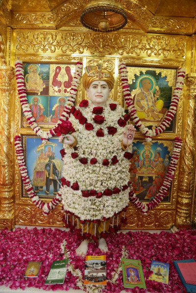 Divine darshan of Jeevanpran Shree Abji Bapashree adorned in garments made entirely of bright white flowers trimmed with large deep red roses
