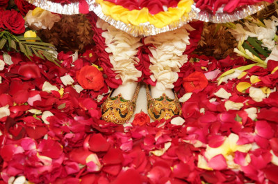 The divine lotus feet of Lord Shree Swaminarayan surrounded by fresh fragrant flower petals