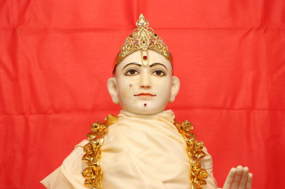 Divine darshan of Lord Shree Swaminarayan adorned in a white shawl with a golden garland
