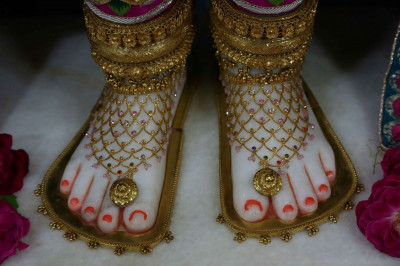 Divine darshan of the Lord's feet