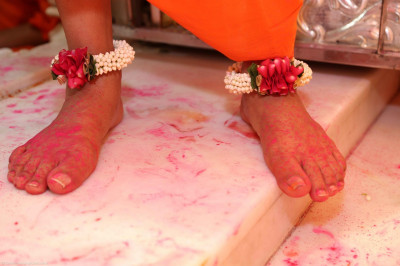 Divine lotus feet of His Divine Holiness Acharya Swamishree