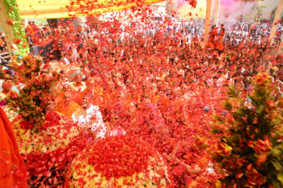 Sants and disciples shower His Divine Holiness Acharya Swamishree with millions of flower petals