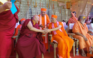Acharya Swamishree Maharaj is Welcomed at the Art of Living's World Culture Festival