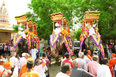 Three of the four elephants at the start of the grand procession