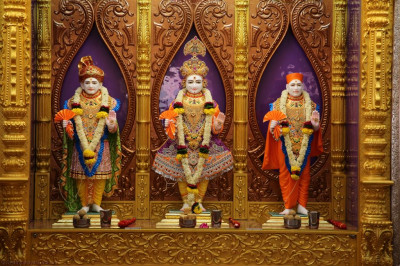 Divine darshan of the newly installaed divine murti of Lord Shree Swaminarayan, Jeevanpran Shree Abji Bapashree and Jeevanpran Shree Muktajeevan Swamibapa at Shree Swaminarayan Mandir Bharasar