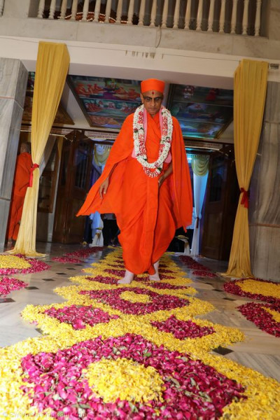 Divine darshan of Acharya Swamishree walking into the main mandir hall