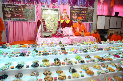 Divine darshan of His Divine Holiness Acharya Swamishree with Shree Sahajanand Swami
