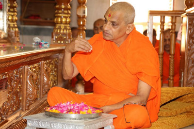 His Divine Holiness Acharya Swamishree showers flower petals at the divine lotus feet of Lord Shree Swaminarayanbapa Swamibapa