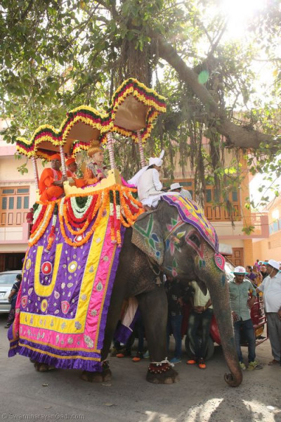 One of the elephants taking part in the grand procession