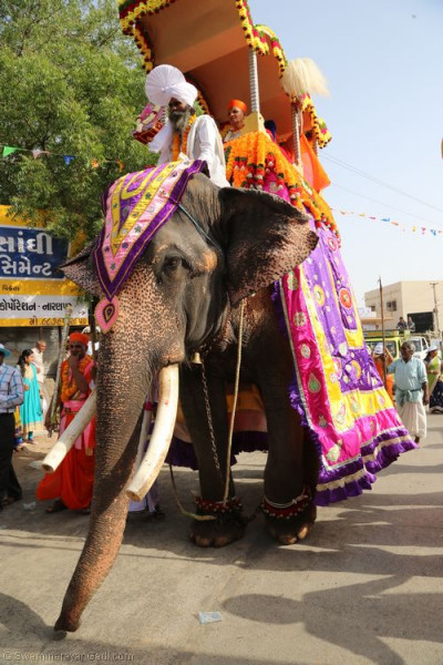 Divine darshan of His Divine Holiness Acharya Swamishree seated on the majestic elephant during the grand procession