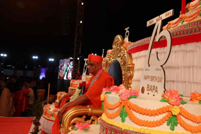 Divine darshan of Acharya Swamishree on this very special occasion