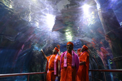 Divine darshan of His Divine Holiness Acharya Swamishree with sants inside the tunnel surrounded by aquatic life in the large tank