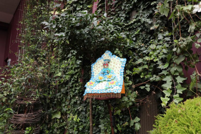 Divine darshan of Shree Harikrishna Maharaj within the cloud forest