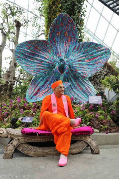 Divine darshan of Acharya Swamishree in front of the 'Rush of nature' sculpture